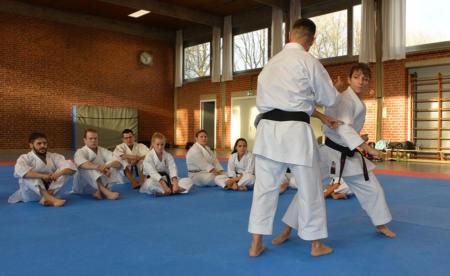 Seguimos una disciplina específica de entrenamientos para el kata de competición